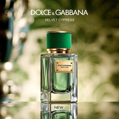 عطرهای جدید Dilce & Gabbana ع