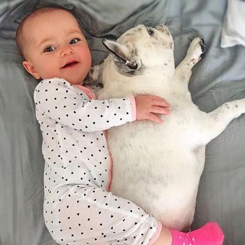 Snuggle buddies 😊