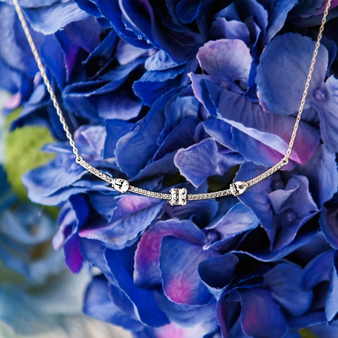 Blooming Beauty.