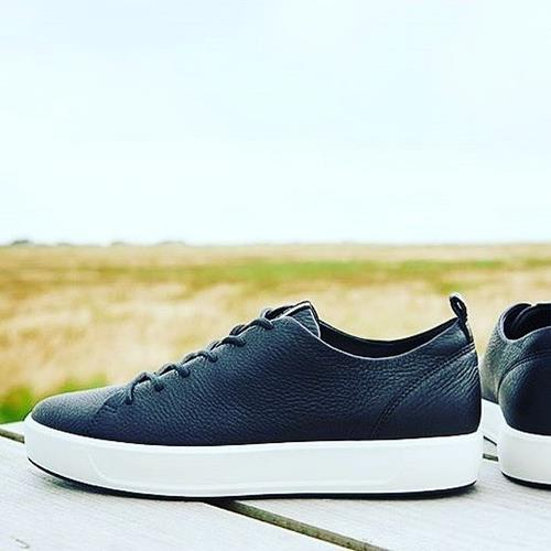 Black is back♠