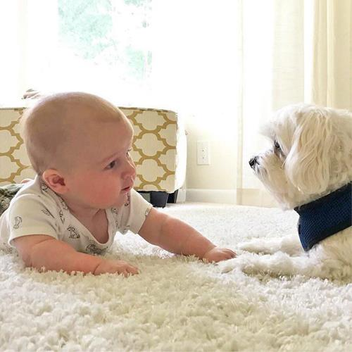 #baby #dog #conversations