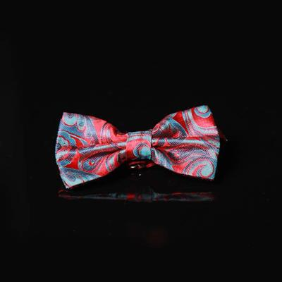 #پاپیون#کراوات#بهنود Bow Tie