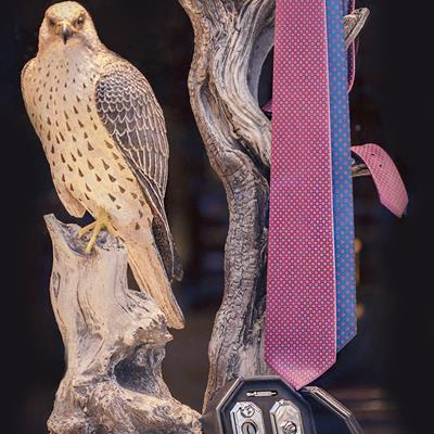 کراوات های استفانو ریچی در رنگ