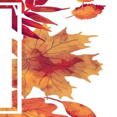 #autumn #sale #scarves  #tt #