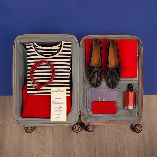 چمدان دلسی مدل ایر فرانس پریمی